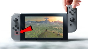Switch Screenshot Button